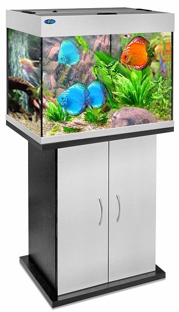 Перевозка аквариума от 50 до 250 литров